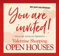 You are invited! Valentine Shopping Open Houses